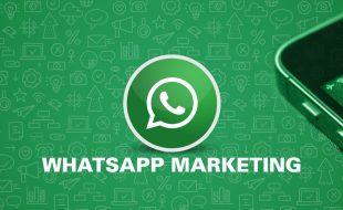 WhatsApp Marketing 廣告宣傳推廣營銷一站式